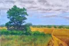 Summer Landscape web 16x20 Oil