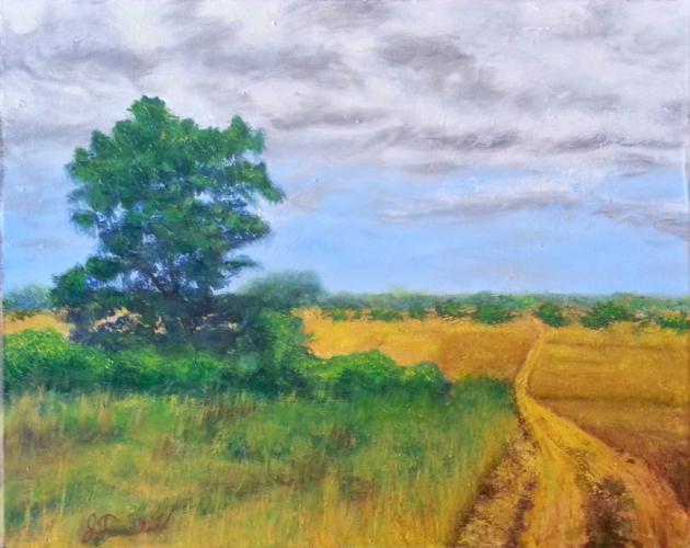 Summer Landscape – Oil on Canvas – $550.00